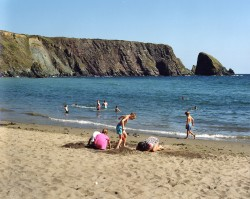 One Of Waterford Countys Many Top Class Beaches [Click On Image To Enlarge]