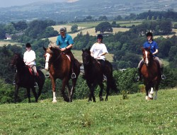 Horse Riding In County Waterford [Click On Image To Enlarge]
